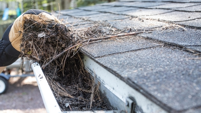Interesting facts regarding cleaning of gutters