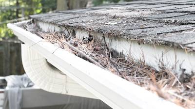 Should one hire gutter cleaning services?